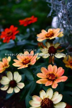 5303_20120529141159.jpg