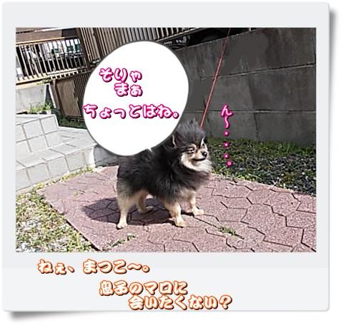0maromatsuko 014