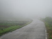 Primary Projection-霧の2の畑_2011/5/21