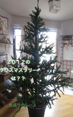 IMG_4568_20121124211835.jpg