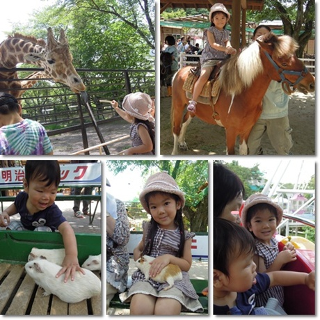 zoo-333.jpg