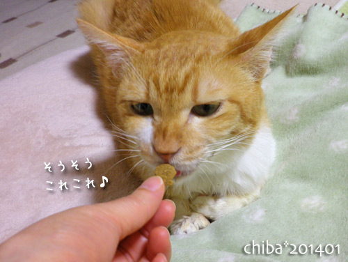 chiba14-01-114.jpg