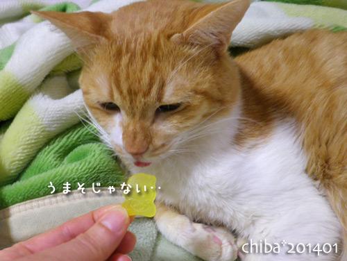 chiba14-01-123.jpg