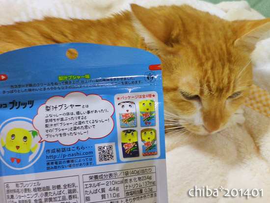chiba14-01-81.jpg