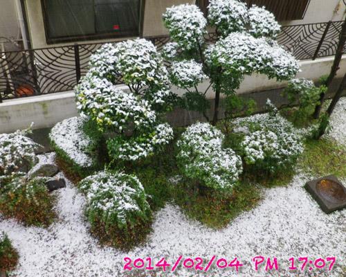 snow204.jpg