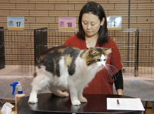 6)サニーくん審査