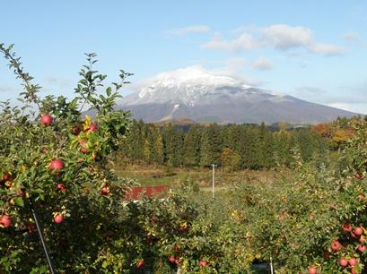 岩木山に雪・・・キレイです。