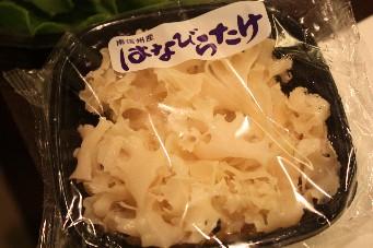 マユミチャンの花びらタケ