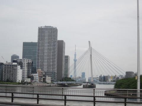 TOKYOwalk2012_170.jpg