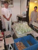 6-野菜バンザイ