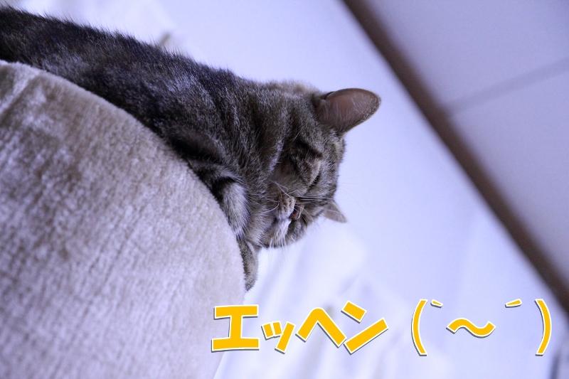 2012111805.jpg
