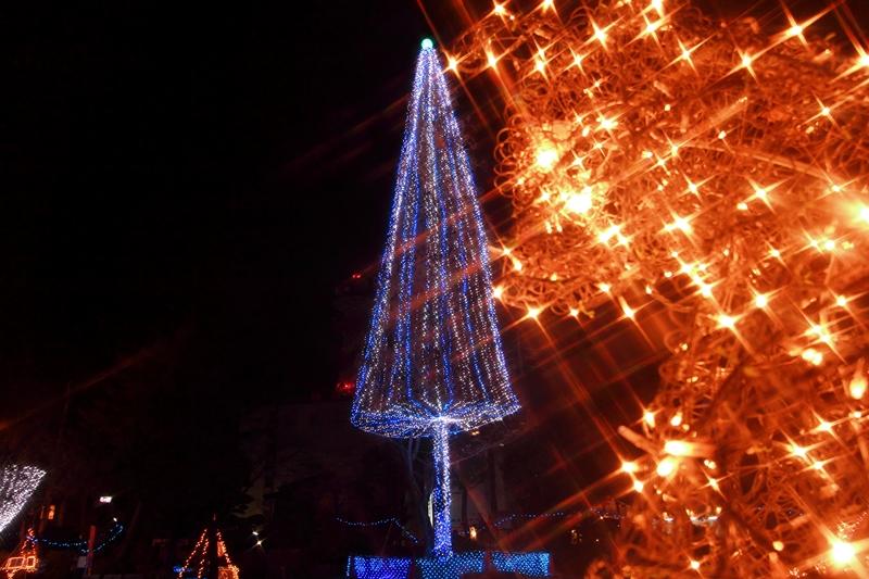 2012121106.jpg