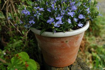 植木鉢塗装