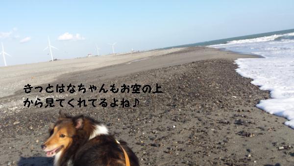 20141019_151127.jpg