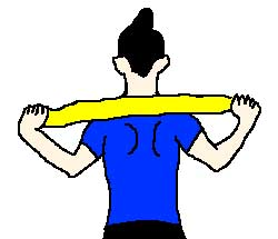 肩甲骨エクササイズ