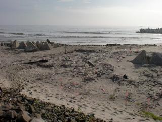 2013年08月04日 荒浜2