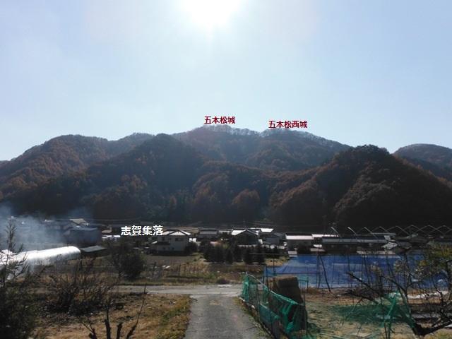 志賀城(佐久市) (145)