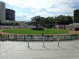 京都競馬場パドック