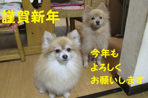 IMG_2098.jpg