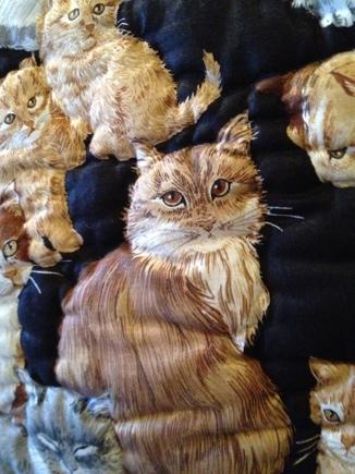 fc2blog_201212272035014fe.jpg