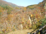 1031naruko1-4.jpg