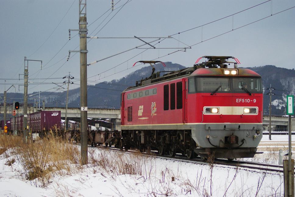 DSC01106.jpg