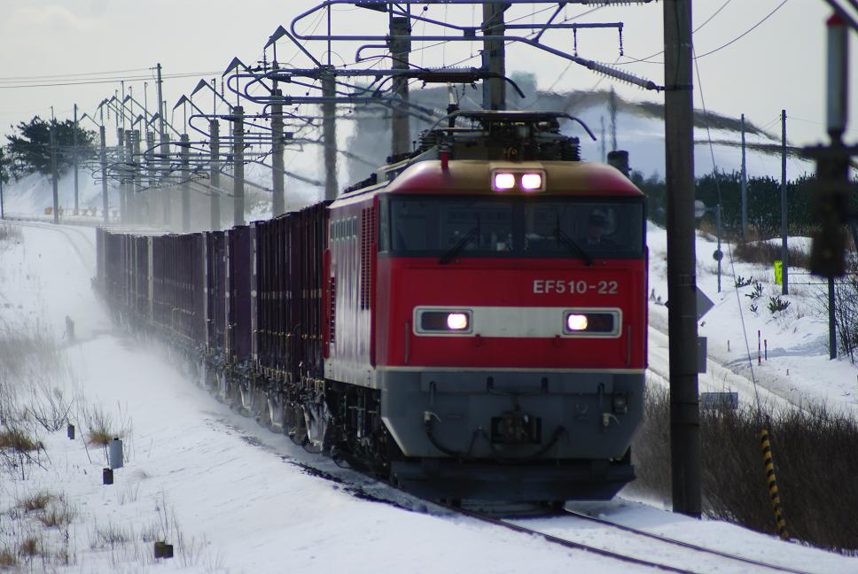 DSC01241.jpg