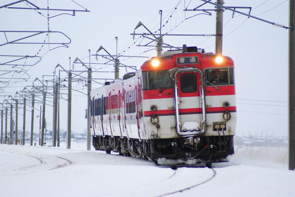 DSC01345.jpg