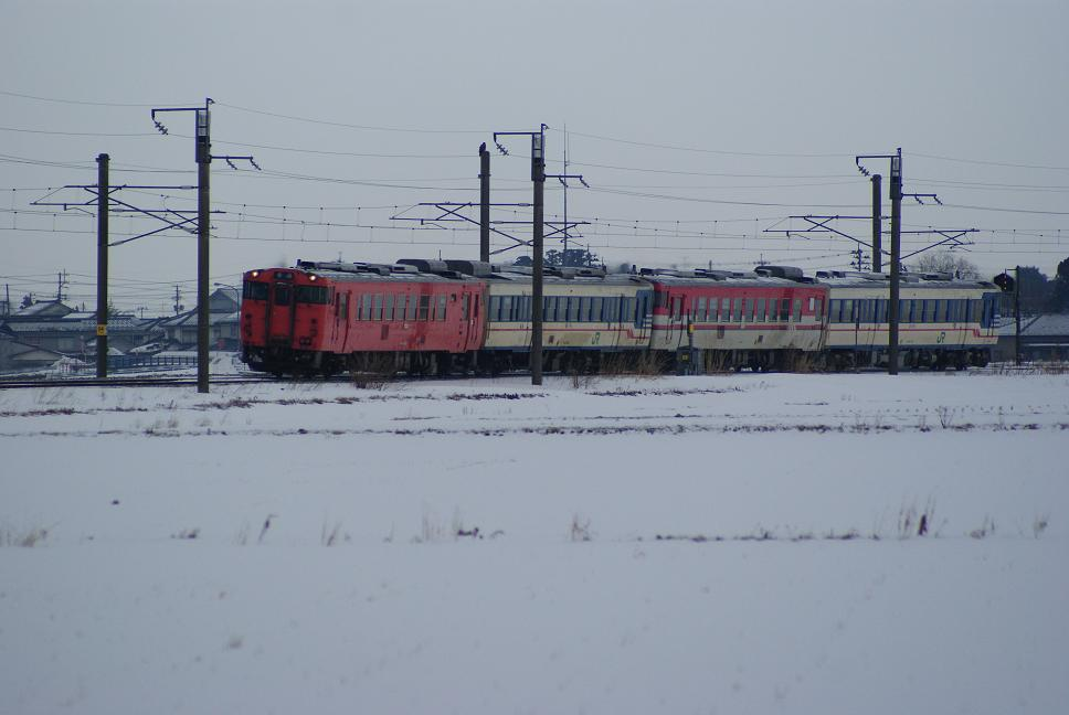 DSC01616.jpg