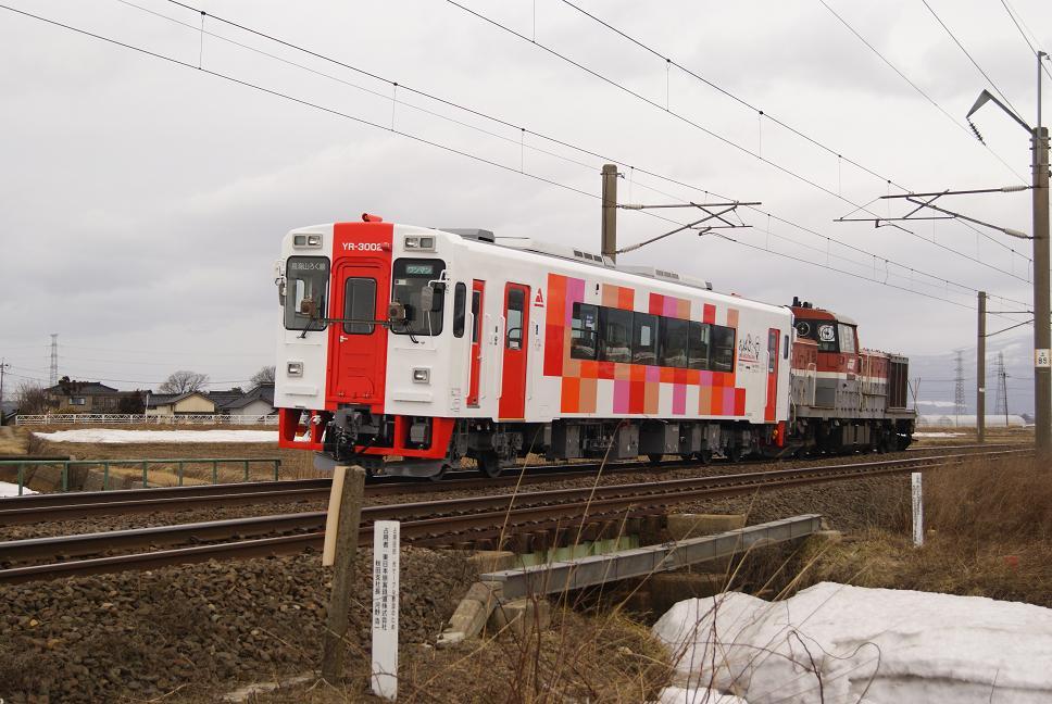 DSC02440.jpg