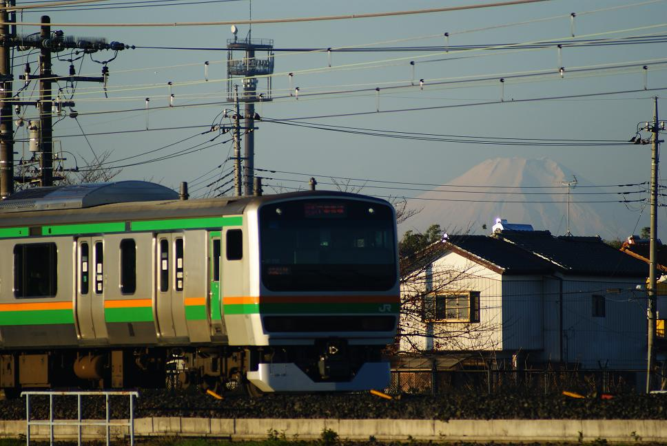 DSC09671.jpg
