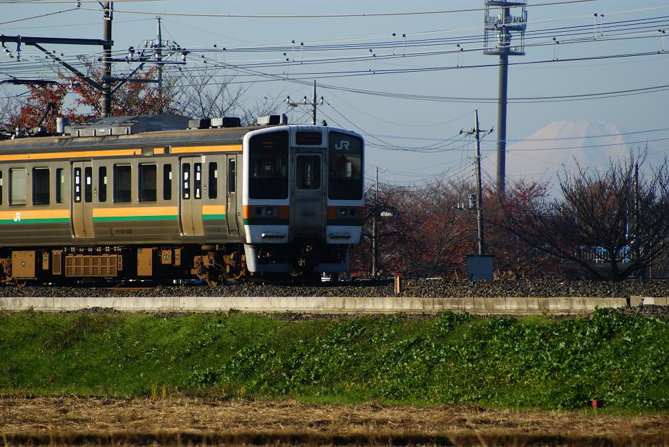 DSC09684.jpg