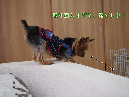 20120615②