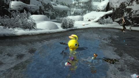 鳥と漁師と温泉?