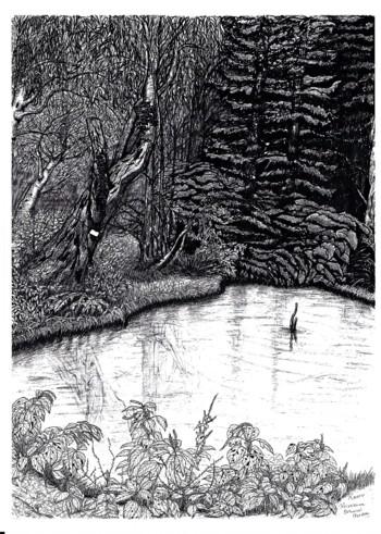 小石川植物園-落羽松の沼
