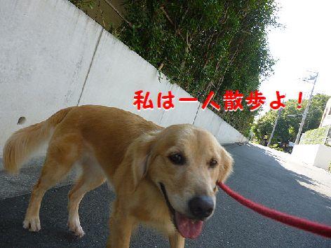 a_20120914081901.jpg
