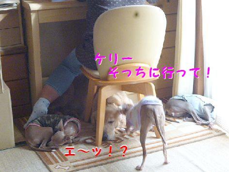 a_20121001072121.jpg