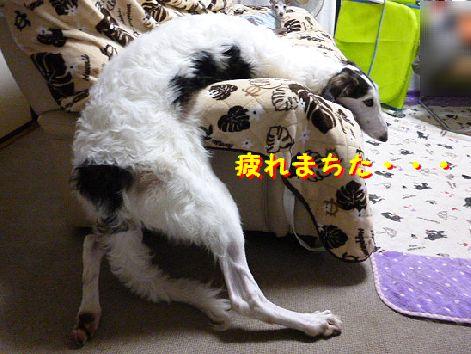 a_20121030075126.jpg