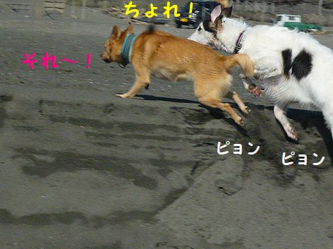 a_20121122074919.jpg