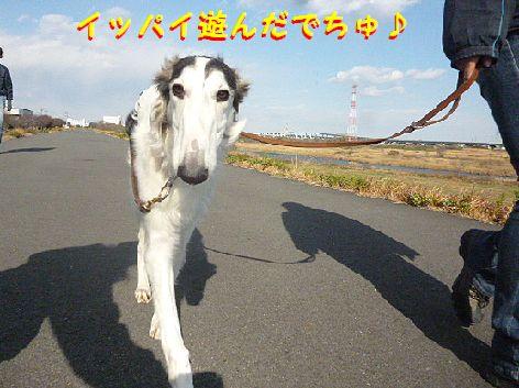 a_20121211074938.jpg