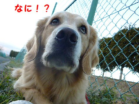 a_20130105112540.jpg