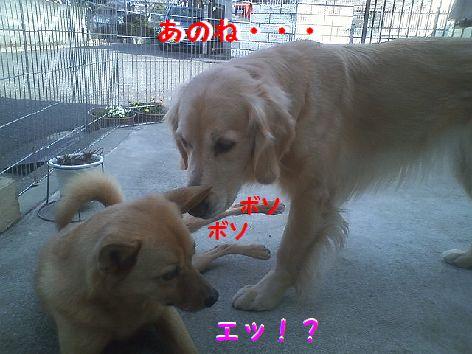 a_20130309085548.jpg