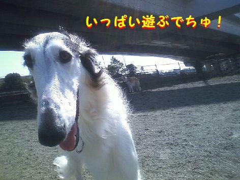 a_20130318074312.jpg