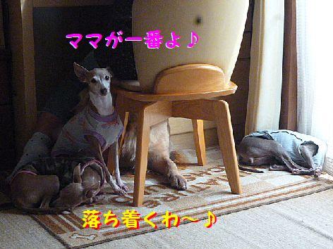b_20121001072121.jpg
