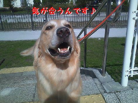 b_20121011073741.jpg