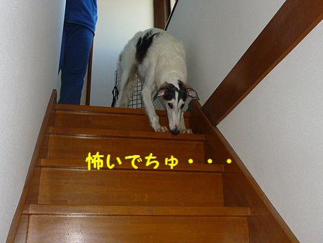 b_20121025074256.jpg