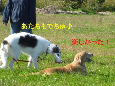 b_20121111082056.jpg