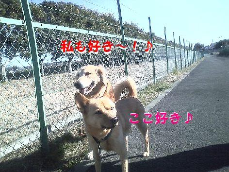 b_20130205134228.jpg