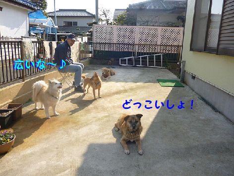 b_20130227074752.jpg