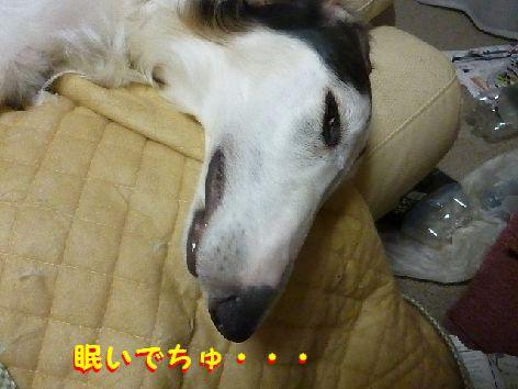b_20130308074937.jpg